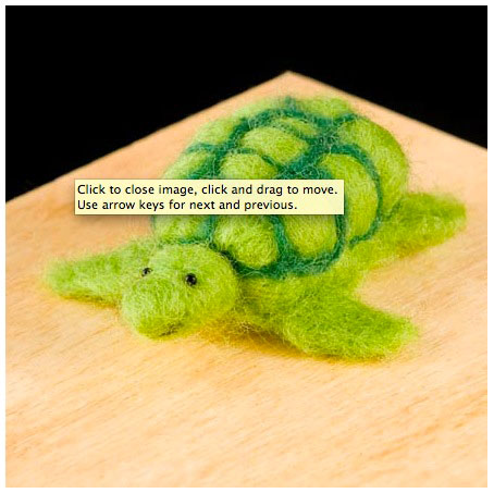 Wool Pets Needle Felting Kit Turtle